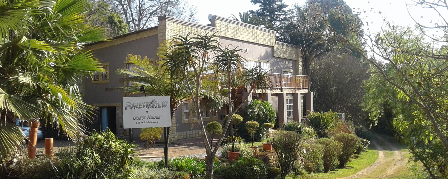 Forest View Guest House, Affordable accommodation in Sabie